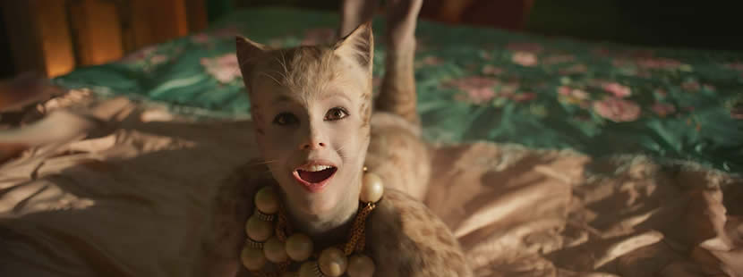 Image from Cats